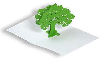 fabricant cartes en pop up 3d cartes pliage perp tuel tirette persienne carte arbre pop up. Black Bedroom Furniture Sets. Home Design Ideas